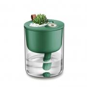 创意小生态加湿器 家用迷你卧室桌面盆栽静音usb加湿器 大型会议礼品